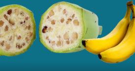 Zo zag fruit er vroeger uit