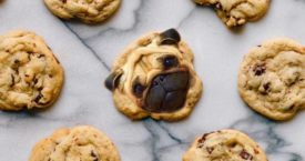 Must-follow: Dogs in Food