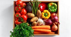 Welke groenten horen in de groentela?