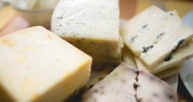 Het ultieme kaasfestival