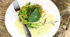 Gegrilde kropsla met zuurkoolsaus