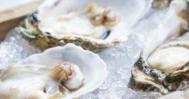Taste of Texel: Vincent Eilandkeuken