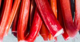 Seizoen: wat je wilt weten over rabarber