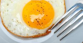 Een ode aan het gebakken ei
