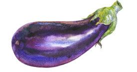 Moet je aubergine echt zouten?