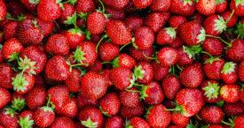 Hoe kies je de lekkerste aardbeien?