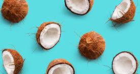 Kijk uit malloot, een kokosnoot