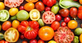 Zo smaken je tomaten rijper