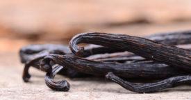 Vanille: stokjes, extract en aroma
