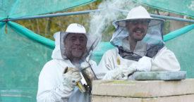 Het Bijen Benefietdiner van Vjeze Fur