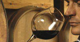 De Wijnsnob